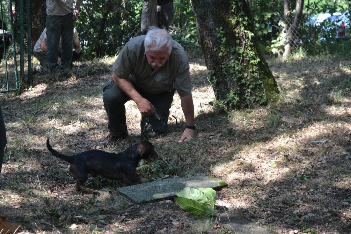 Tečaj za vodnike jamarjev